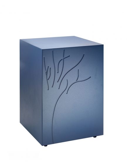 Cedro Blu